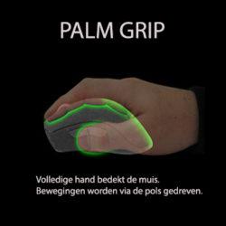 palmgrip